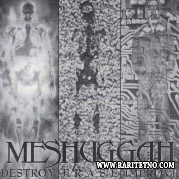 Meshuggah - Destroy Erase Improve 1995