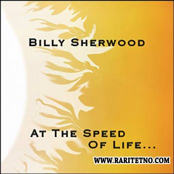 Billy Sherwood - At The Speed Of Life 2008
