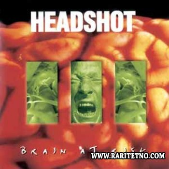 Headshot - Brain at Risk 1995
