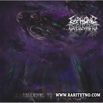 Euphoric Defilement - Ascending To The Worms 2013 (LOSSLESS)