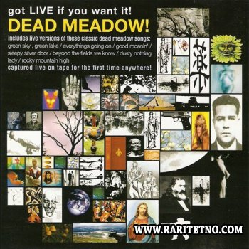 Dead Meadow - Got Live If You want It 2002