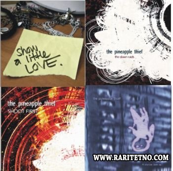 THE PINEAPPLE THIEF - DISCOGRAPHY - SINGLES 2005-2013