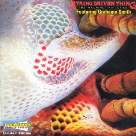 String Driven Thing - The Machine That Cried 1973 (lossless + mp3)